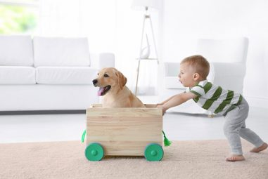 8 Reasons Pets Keep Your Kids Healthy