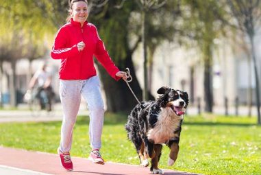 5 Ways You Can Start Running With Your Dog