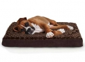 Top 10 Best Dog Beds in 2020 | The Comprehensive Reviews
