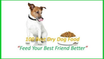100 Best Dry Dog Food By the Dog Food Advisor of Petdogplanet