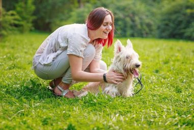 Your Dog can Make You Feel Better in a Stressful Situations