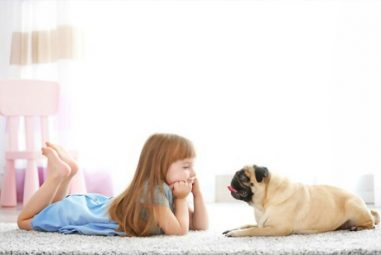 10 Ways How Caring For Pets Teaches Children Responsibility
